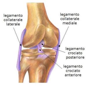 lesione-articolare